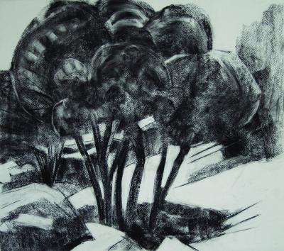 Ain Zhalta 2, 2013 charcoal on paper, 48x54 cm