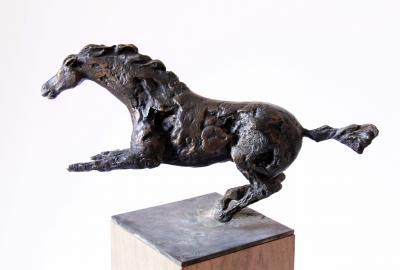 Horse, Bronze, 20.5x37x21.5cm
