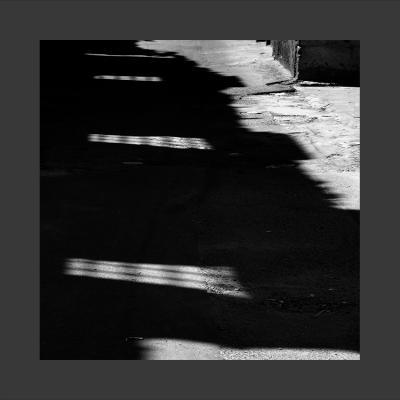 5 Damas, 2013, Tirage sur Papier Coton, 80 x 80 cm, 1/7