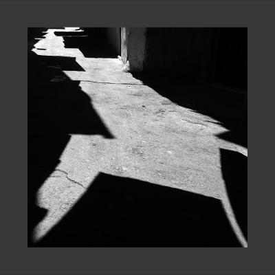 35 Damas, 2013, Tirage sur Papier Coton, 80 x 80 cm, 1/7