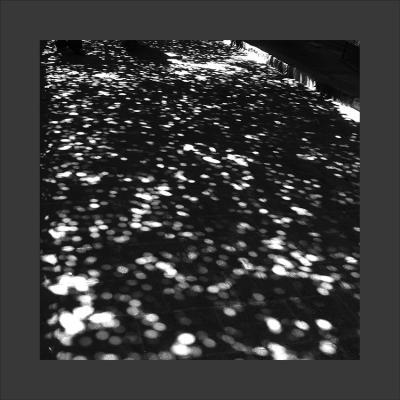 2 Damas, 2013, Tirage sur Papier Coton, 80 x 80 cm, 1/7