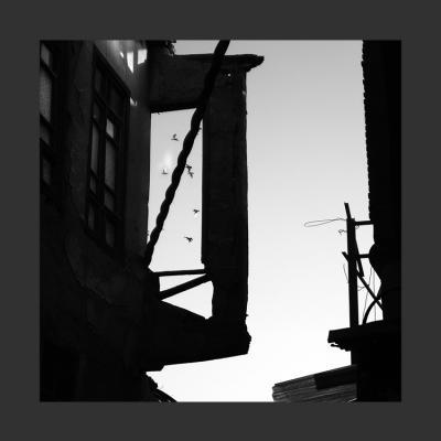 34 Damas, 2014, Tirage sur Papier Coton, 110 x 110 cm, 1/7