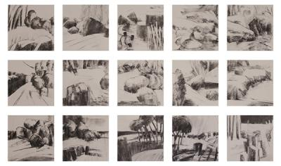 Impressions, 2013, charcoal on paper,15 drawings, 30x30cm each.