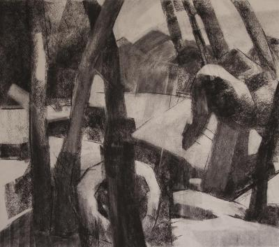 A l'Affut, 2013 charcoal on paper, 48x54 cm
