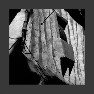31 Damas, 2013, Tirage sur Papier Coton, 80 x 80 cm, 1/7