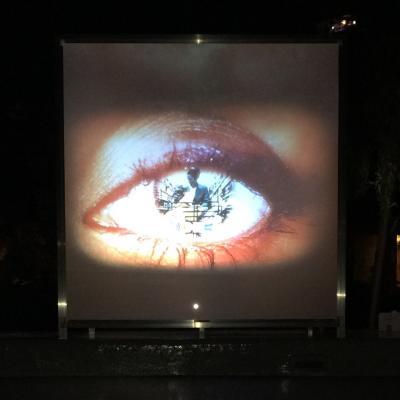 """sHe #9"" video&audio white cube installation 2"