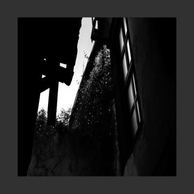 11 Damas, 2014, Tirage sur Papier Coton, 110 x 110 cm, 2/7