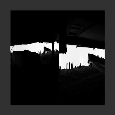 33 Damas, 2014, Tirage sur Papier Coton, 110 x 110 cm, 1/7